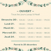 Horaires de Noël #cadeaux #lastminute #noelalionsurmer #decointerieure #petitsbonheurs #ideecadeau #conceptstore #familystore